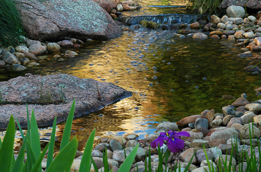 McKee Cancer Center - Therapeutic Healing Garden