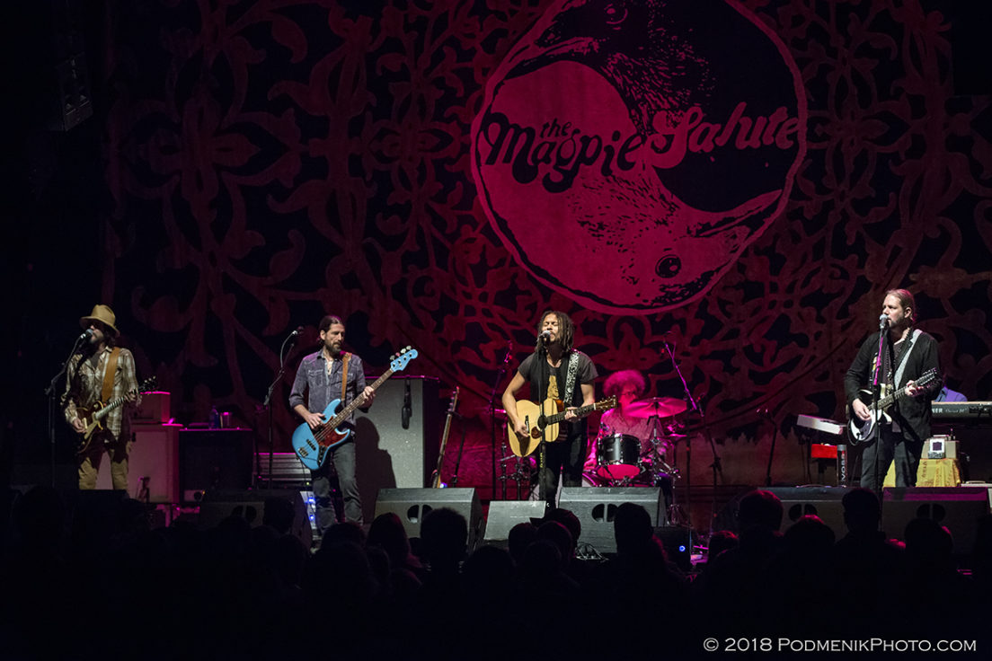 The Magpie Salute IMG_3678