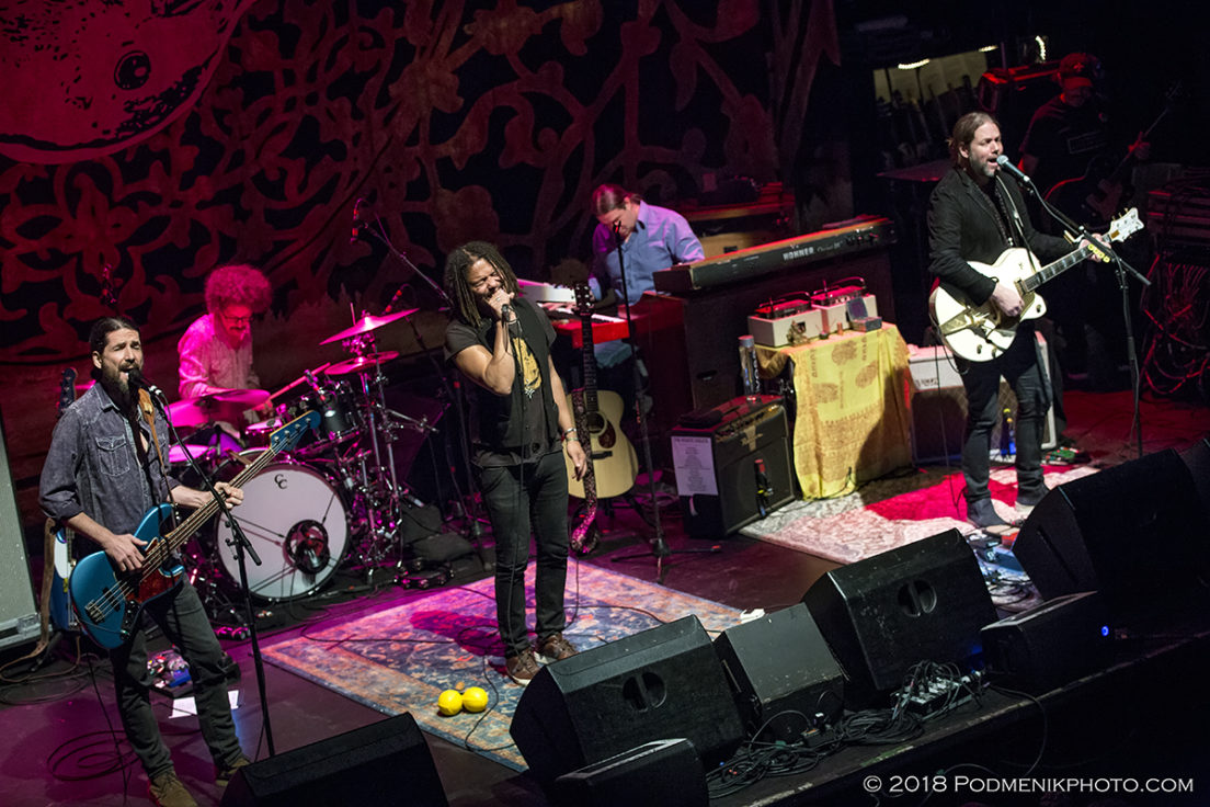 The Magpie Salute IMG_3723