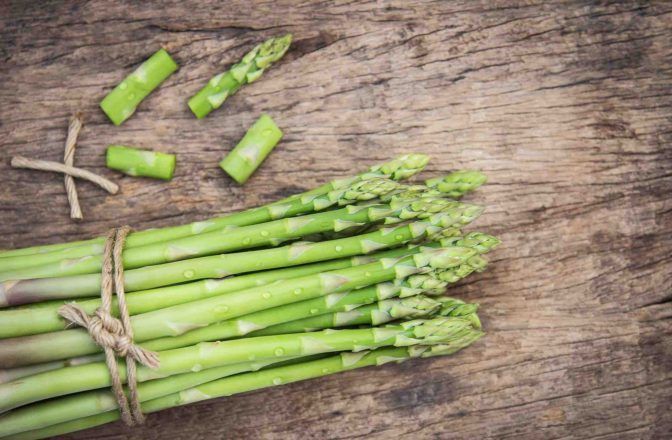 Dogs can't eat asparagus