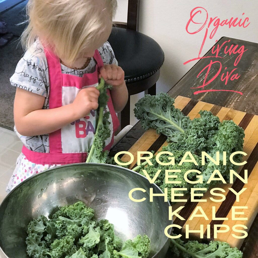 Organic Vegan Cheesy Kale Chips chef assistant breaking apart kale