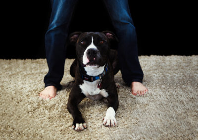 Pets and PeopleMP3_4343a