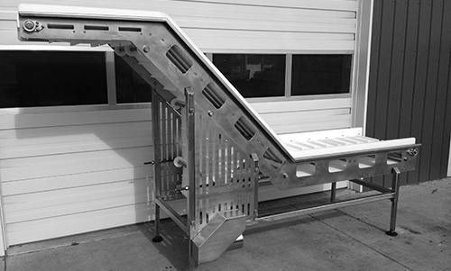 Elevating_Conveyor (41)