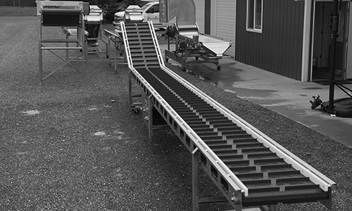 Elevating_Conveyor (43)