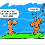 Wildlife Humor