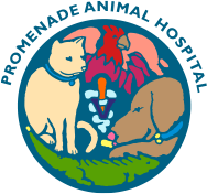 Animal Hospital of North Charleston logo