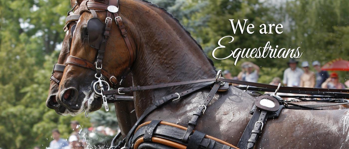equestrians-slider