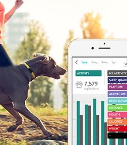 Pet Health Activity Fitness Trackers