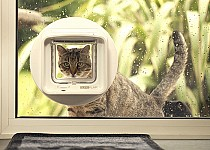 Microchip Cat Flaps Pet Doors