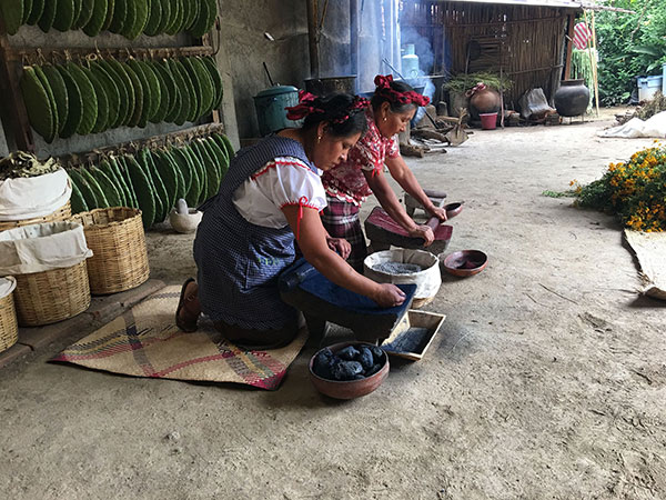 preparing indigo and cochineal dyes