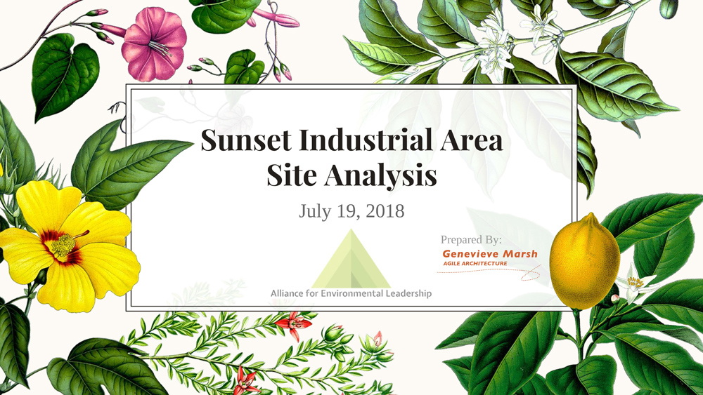 Sunset Area Site Analysis Slide__Page_01