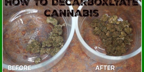 How To Decarboxlyate Cannabis