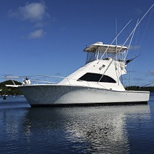 Blue Marlin Magic5