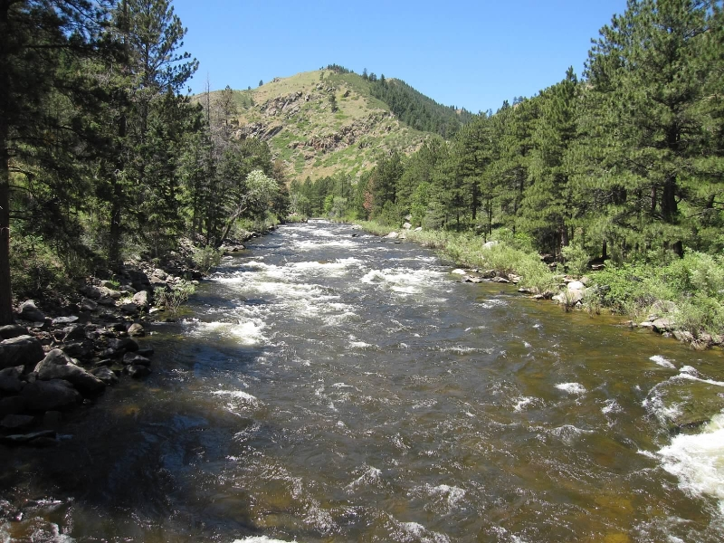 Poudre River at Greyrock Trailhead in July 2010