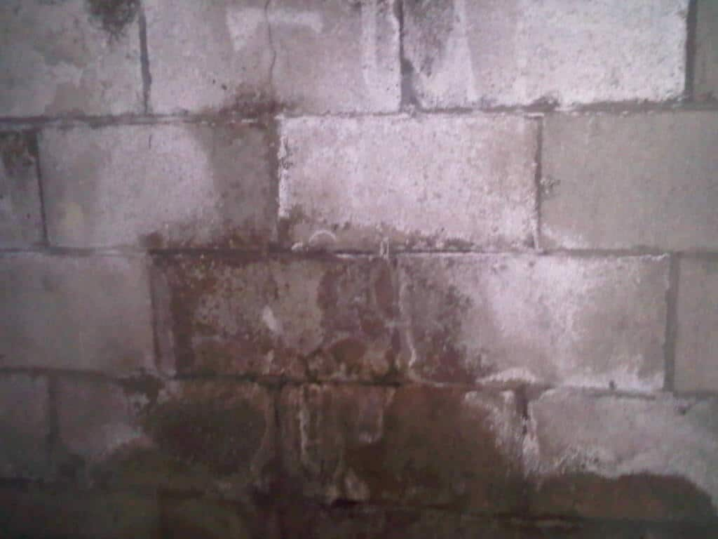Water damage can be caused by even small cracks