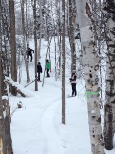 Guided Snowshoe Hike @ Wasi Cross Country Ski Club | Astorville | Ontario | Canada