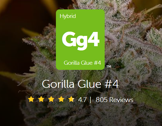 Another Winning Mark for #GG4