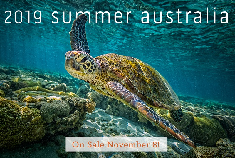 You can start booking Australian Cruises from November 8, 2017