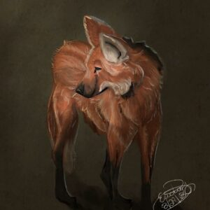 Maned Wolf: Digital