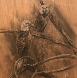 Eagles: 2' x 2' Charcoal on Plywood