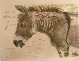 Donkey: 9 x 12 Watercolor