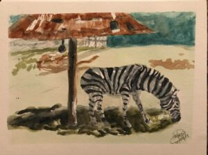 Zebra: 9 x 12 Watercolor