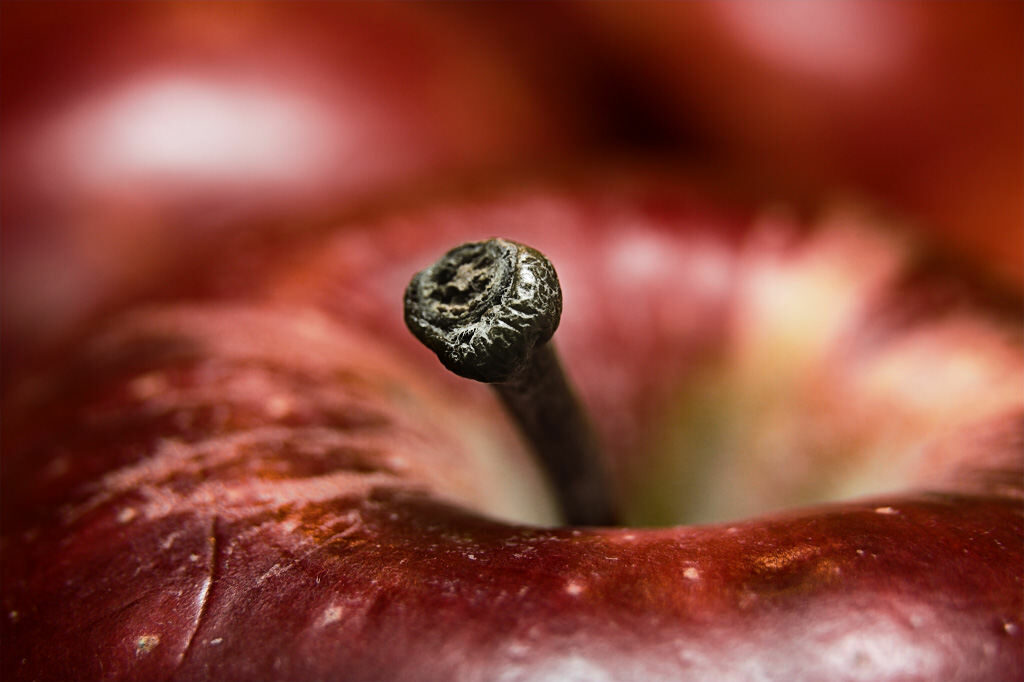 Close up of the top of an apple