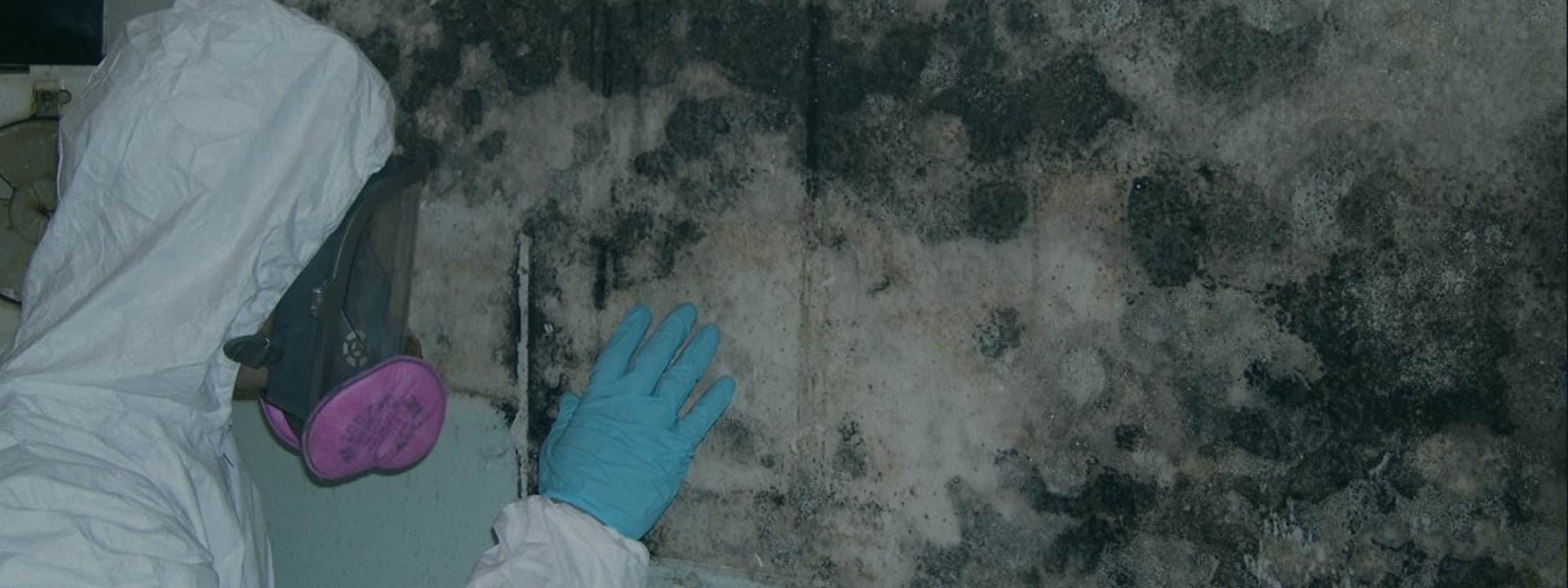 water damage restoration manhattan mold solutions