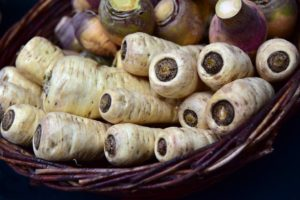 a basket of freshly gathered parsnips