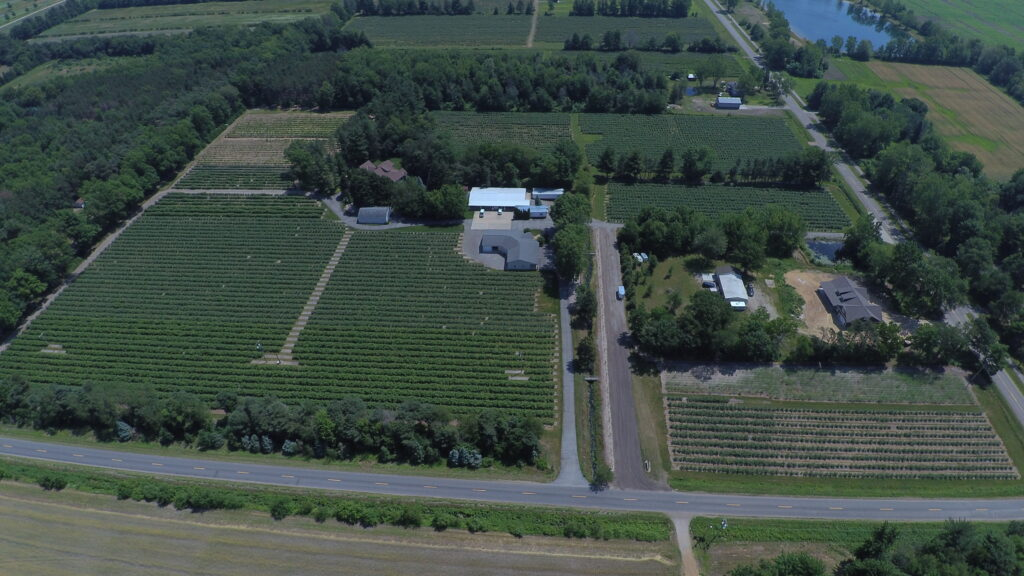 Holland, Michigan blueberry farm - S. Kamphuis blueberries serving all of West Michigan with fresh or frozen berries