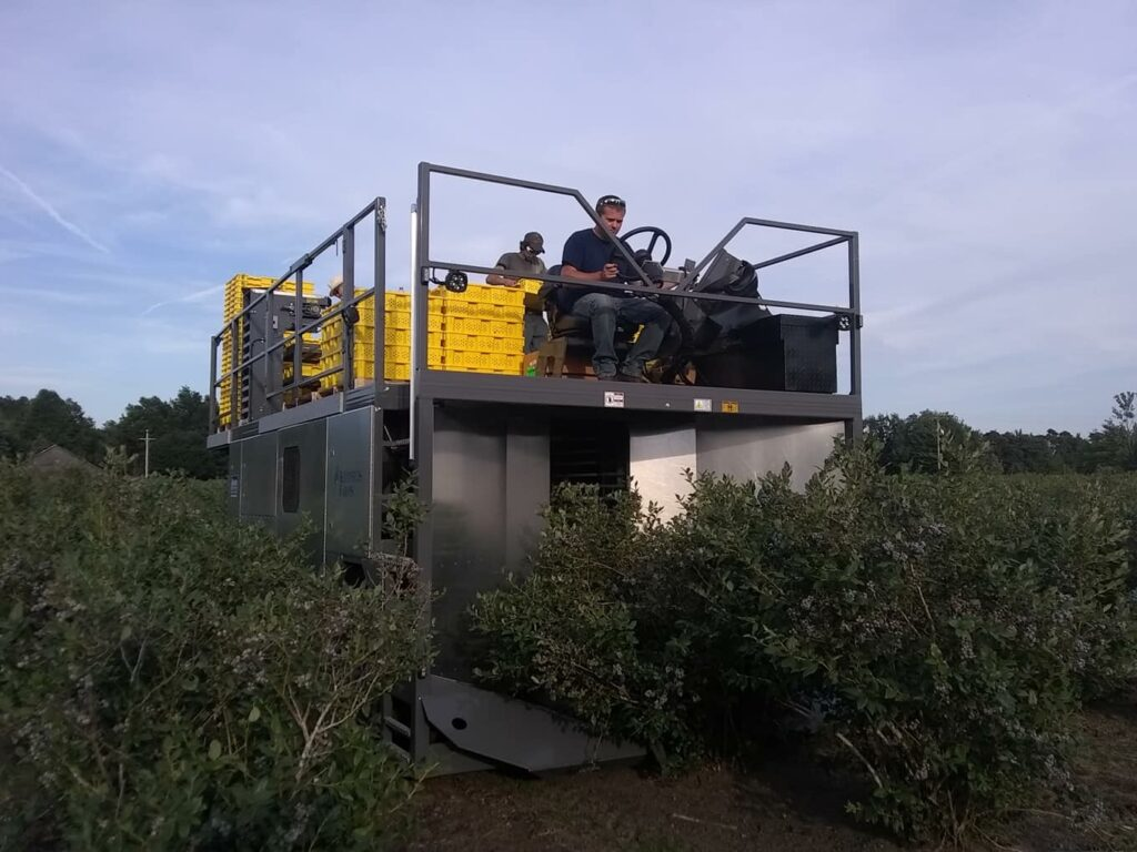Fresh u-pick or already picked berries in season & fresh-frozen blueberries all year - visit our Holland, Michigan farm!
