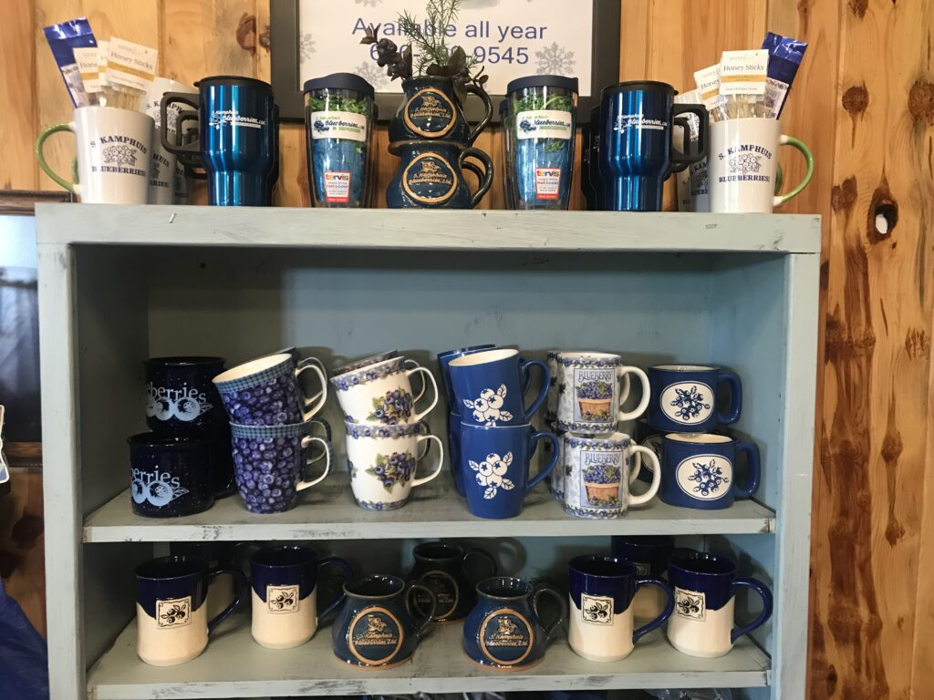 Fresh or frozen blueberries & blueberry products in Holland, Michigan