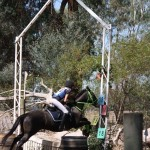 Oxley Recreation Reserve Horse Jumping