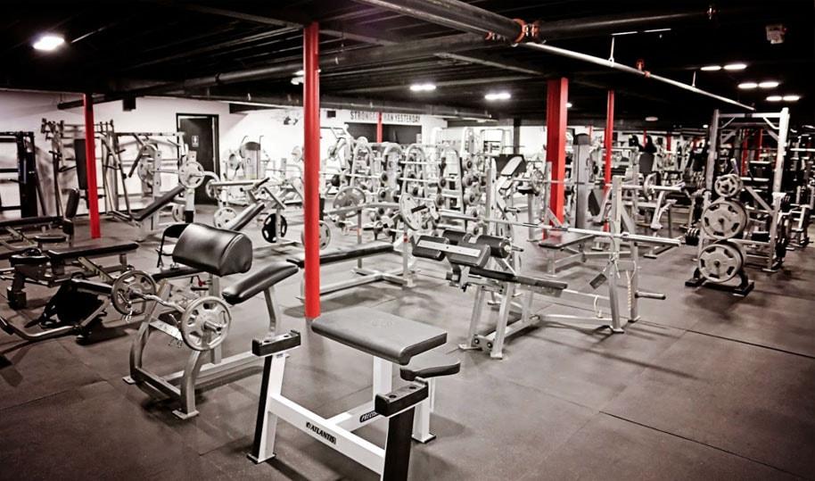 alpha fitness gym cardio