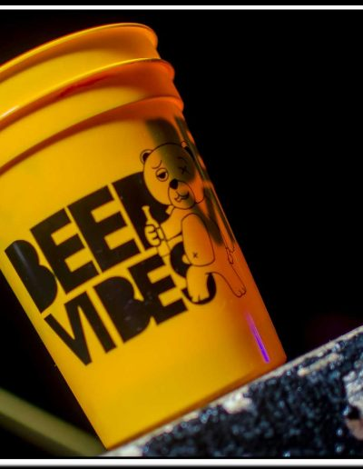 BEER VIBES SUMMER 2017 EDITION-373