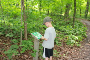 A Yellow Pepper reads about the trail before the hike