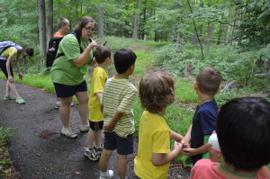 """The """"eggs"""" learn about plants in the forest"""