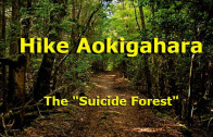 "Take a hike in Japan's ""suicide forest"" Aokigahara at base of Mt. Fuji"