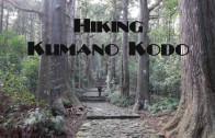 Hike Kumano Kodo's 1,000 year old pilgrimage routes