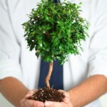 Defining Requirements for Business Growth, without Technical Limitations