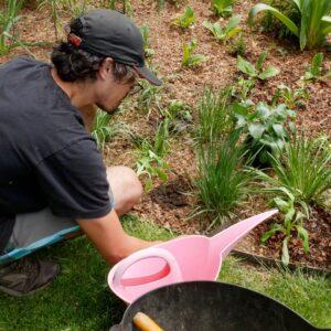 Cass Planting