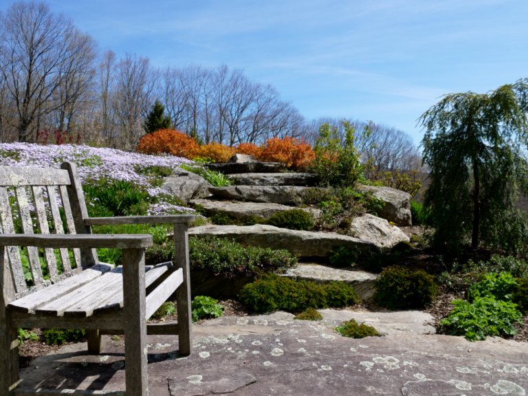 Rock Garden Sittting Area in Early Spring