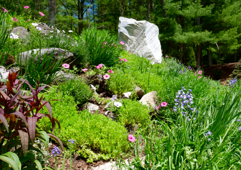 Rock Garden with Annual Color