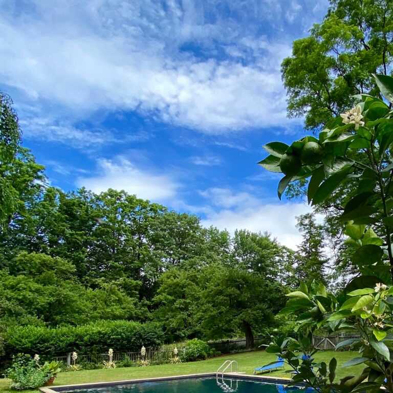 Inspired Pool Garden