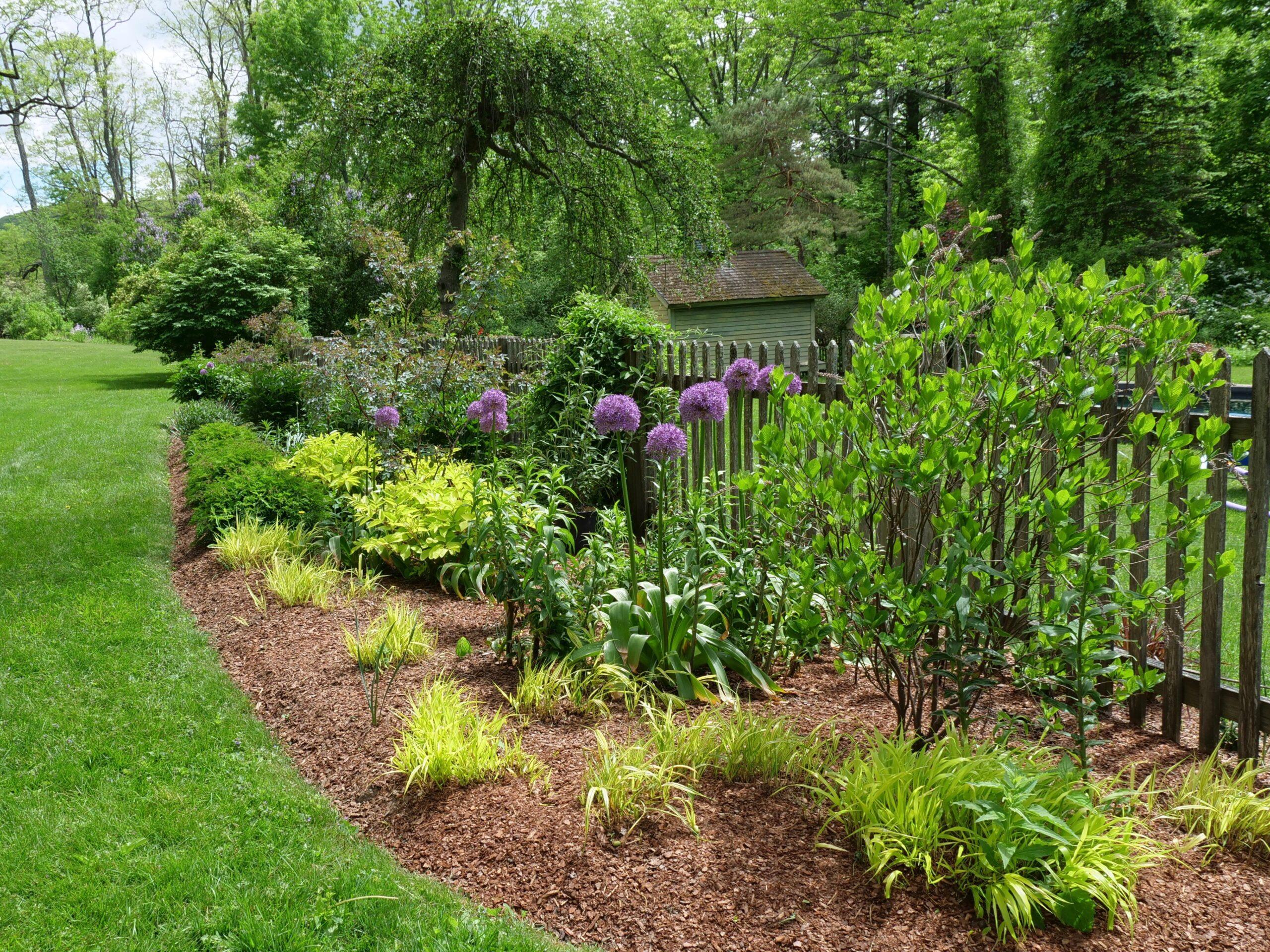 Memorial Day Gardening Checklist
