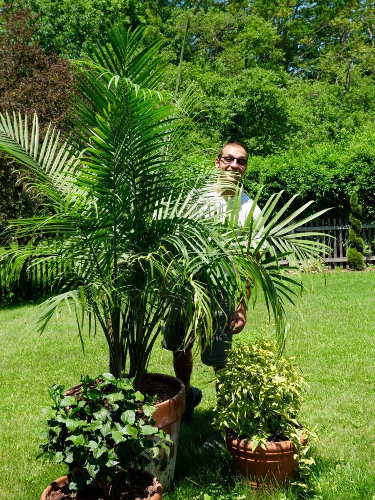 Generoso with a grouping of summer pots