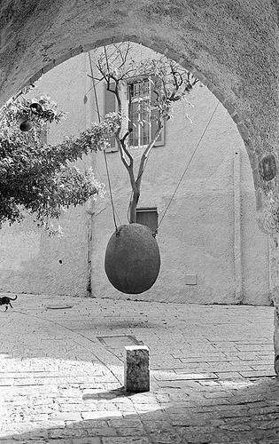 Yaffo Hanging Ball