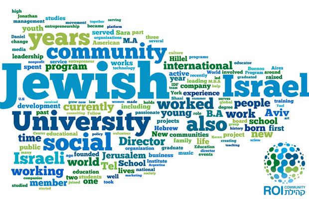 A word cloud made up of the 150 most used words contained in all the personal profiles of the members of the 2015 ROI Community.