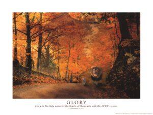 Grace Reflections Glory