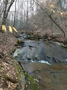 Owner Financing! 2 Acres left! 1 or 2 acres on Mountain Stream